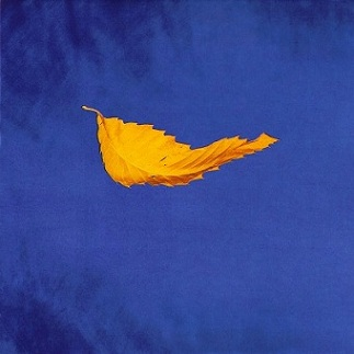 New Order - True Faith single cover