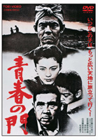 The Gate of Youth 1981 DVD cover.jpg
