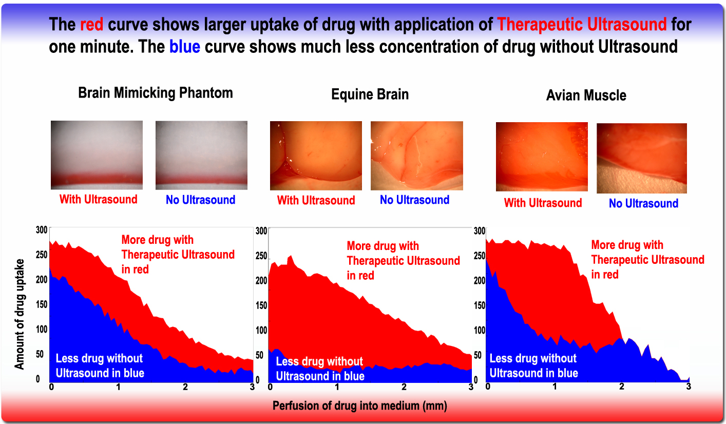 Powerpoint Template Chart: Chart showing efficacy of acoustic targeted drug delivery.jpg ,Chart
