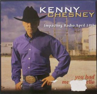 You Had Me from Hello 1999 single by Kenny Chesney