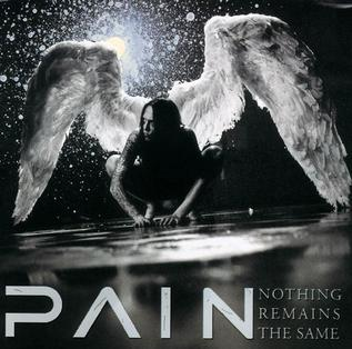 <i>Nothing Remains the Same</i> 2002 studio album by Pain