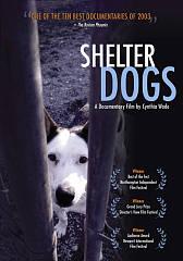 Dog Rescue Society Romulus Ny