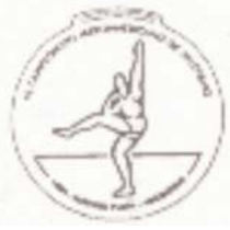 1994 Ibero-American Championships in Athletics logo.png