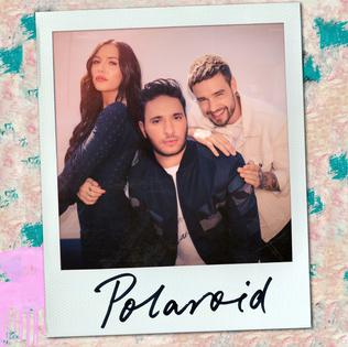 Polaroid (Jonas Blue, Liam Payne and Lennon Stella song) 2018 single by Jonas Blue, Liam Payne and Lennon Stella