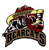 Thunder Bay Bearcats ice hockey team
