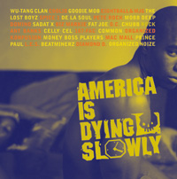 Various - America Is Dying Slowly.jpg