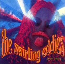 <i>Zoom Daddy</i> album by The Swirling Eddies