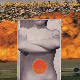 <i>The Crawling Distance</i> 2009 studio album by Robert Pollard