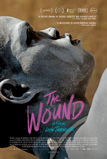 the wound 2017 film wikipedia