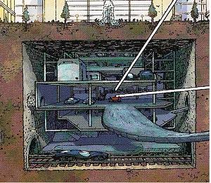 Batcave Wikiwand