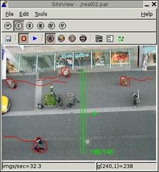 SiteView Pedestrian-Area.JPG