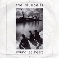 The Bluebells Young at Heart single cover.jpg