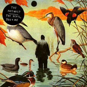 <i>The Devil, You + Me</i> 2008 studio album by The Notwist