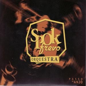 <i>Passo de anjo</i> 2004 studio album by SpokFrevo Orquestra