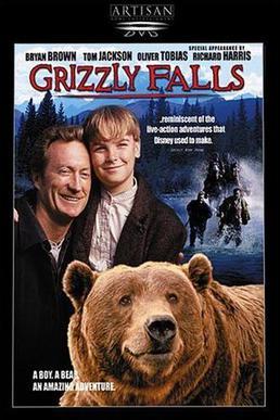 Wielka niedźwiedzica / Grizzly Falls (1999) PL.DVDRip.XviD / Lektor PL