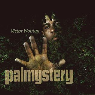 <i>palmystery</i> 2008 studio album by Victor Wooten