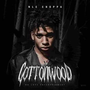 <i>Cottonwood</i> (EP) 2019 extended play by NLE Choppa