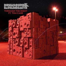 Through the Night (Drumsound & Bassline Smith song)