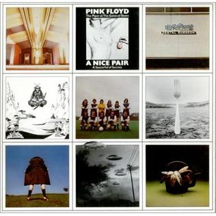 <i>A Nice Pair</i> 1973 compilation album by Pink Floyd