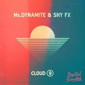 Ms. Dynamite and Shy FX - Cloud 9 (studio acapella)