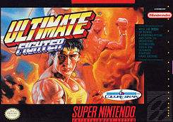 <i>Ultimate Fighter</i> 1992 video game
