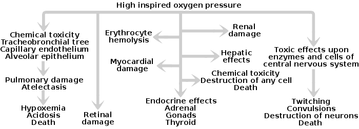 Oxygen Toxicity Wikipedia