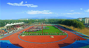University Stadium of Huazhong University of Science and Technology in Wuhan Hustfields.jpg