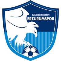 Büyükşehir Belediye Erzurumspor logo.png