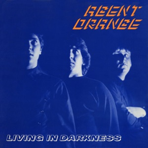 <i>Living in Darkness</i> 1981 album by Agent Orange