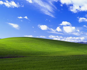 Bliss as seen in a clean Windows XP desktop
