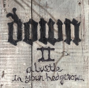<i>Down II: A Bustle in Your Hedgerow</i> 2002 studio album by Down