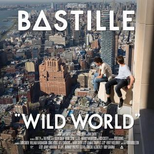 Image result for wild world bastille