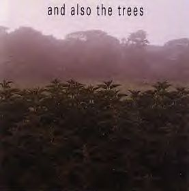 And Also The Trees Album Wikipedia