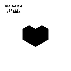 <i>I Love You Dude</i> 2011 studio album by Digitalism