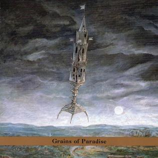 <i>Grains of Paradise</i> (album) 2001 studio album by Erik Friedlander