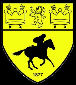 Newmarket Town F.C. Association football club in England