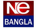 Ne Bangla 2010.png