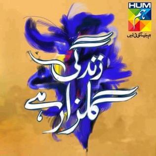 <i>Zindagi Gulzar Hai</i> 2012 Pakistani television series