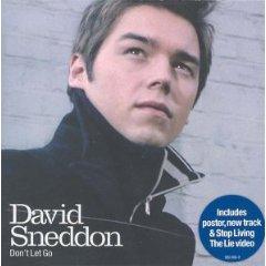 Imagem da capa da música Dont Let Go de David Sneddon