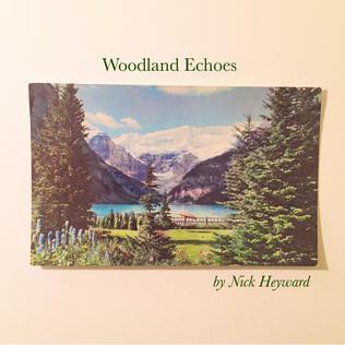 <i>Woodland Echoes</i> 2017 studio album by Nick Heyward