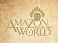 Amazon world logo