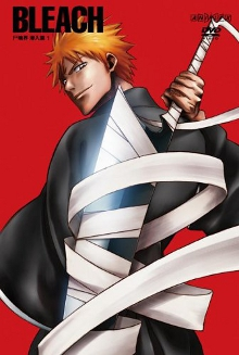 Bleach (season 2) - Wikipedia
