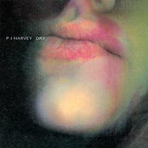 PJHarveyDryalbumcover.jpg