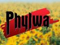 <i>Phulwa</i> Indian television series