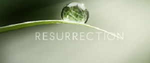 Resurrection 2013 logo.jpg