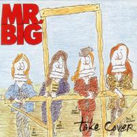 Mr big singles
