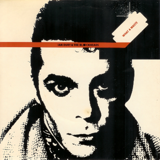 What a Waste 1978 single by Ian Dury & The Blockheads
