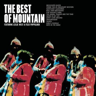 <i>The Best of Mountain</i> 1973 greatest hits album by Mountain