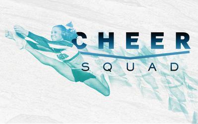 cheer squad wikipedia