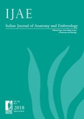 Italian Journal of Anatomy and Embryology - Wikipedia